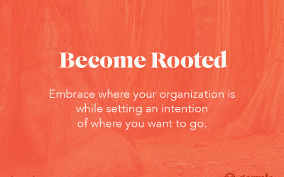 7 Guiding Principles: #1 Become Rooted